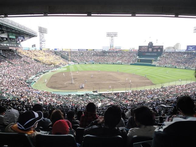 舞台となった甲子園球場(WikimediaCommonsより)