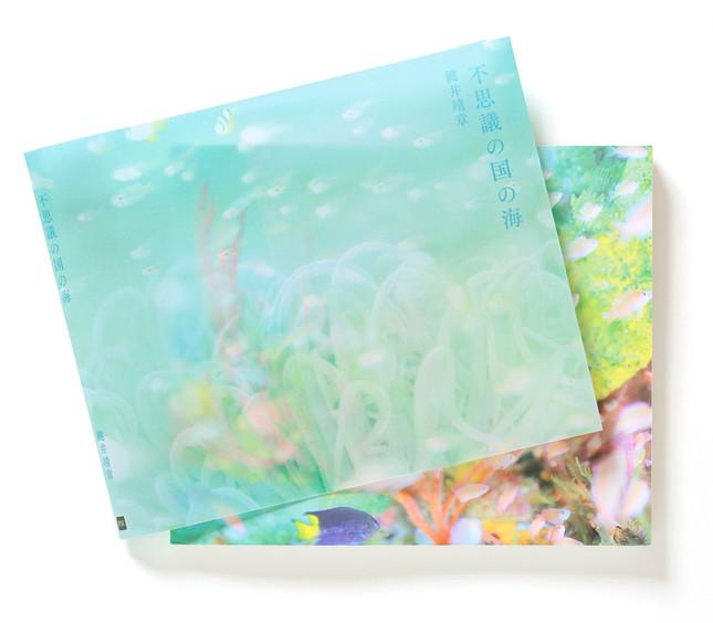 本体表紙の極彩色の魚たちが透ける