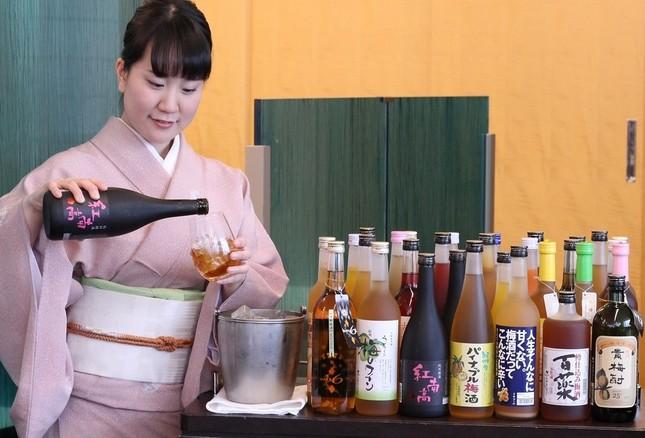 梅酒の品評会で日本一に輝いた3銘柄も飲み放題