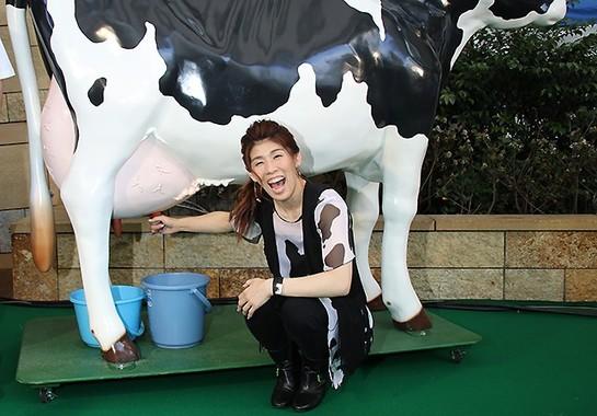 模型の牛で乳搾り体験