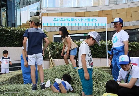 会場の「ふかふか牧草ベッド」に子どもたちは夢中