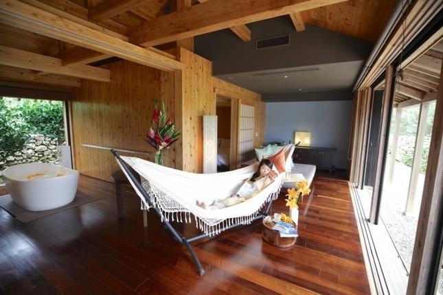 沖縄伝統の眠り草で質の良い睡眠をゲット