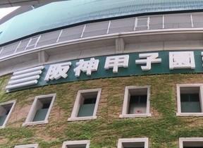 阪神、泥沼7連敗 「夏の失速」にファンが動じないワケ