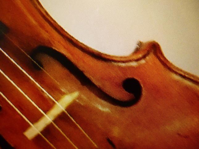 17世紀イタリア・クレモナで作られたヴァイオリンの名器の一部