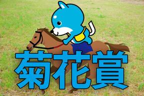 ■菊花賞 「カス丸の競馬GⅠ大予想」   大雨に強く、長距離に強いのはこれだ!