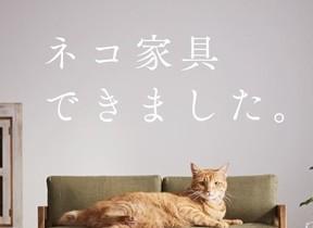 「ネコ専用」家具が爆誕 ソファ、ベッド...かわいいにゃ~!