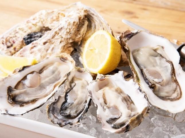 貴重な生牡蠣も半額ならば心ゆくまで食べられる (左から)北海道・厚岸産、兵庫・坂越産、北海道・仙鳳趾産、岩手・広田湾産