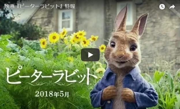 日本人向けの特報(画像は「SonyPicturesJapan」が公開した「映画『ピーターラビット』特報」より)