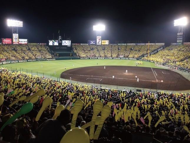 表見返しには阪神甲子園球場の写真を全面掲載