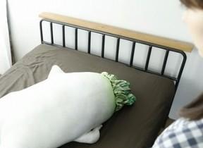 「セクシー大根」がなんと抱き枕に 魅力にメロメロ「腕枕されたい」