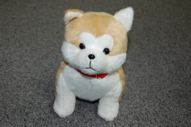 おすわりしている秋田犬