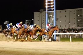 ナイター競馬を優雅に観戦