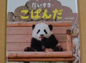 控えめに言って、悶絶不可避...! 3匹の子パンダたちのかわいすぎる写真絵本