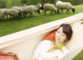 本物の羊を数えてうとうと「羊とお昼寝ハンモック」 星野リゾートトマム