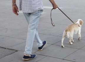 加齢が与える痛み 北方謙三さんは散歩で転んで、悔しがる