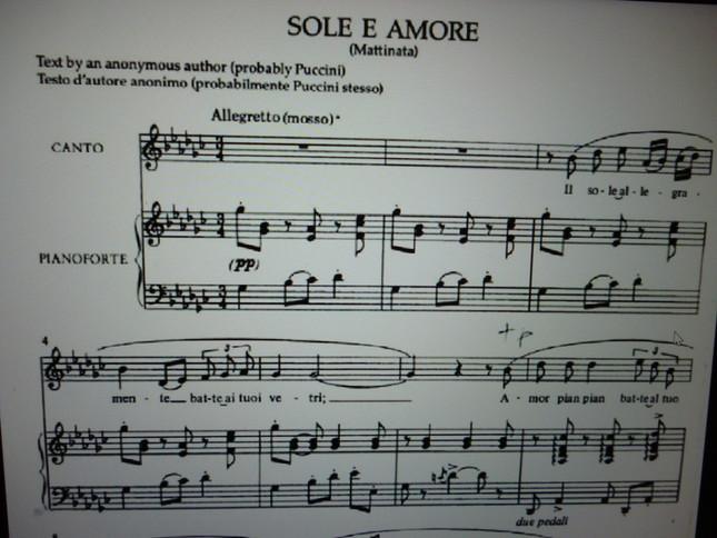 歌詞は全く別物で、さらに歌曲はピアノ伴奏、オペラは本来オーケストラ伴奏、という違いがあるが、メロディーが全く同一の2曲の楽譜
