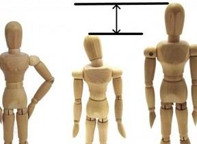 高身長女子VS低身長女子、どっちもツライよ 女の子の理想の身長は?