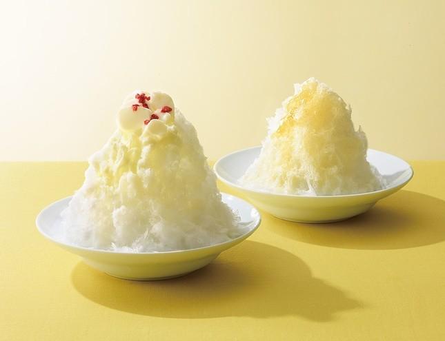左が「杏仁」(590円)、右奥が「はちみつレモン」