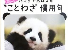 何度も見たくなる、ゆる~い参考書 「パンダでおぼえる ことわざ慣用句」