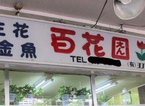 花屋に掲げられた看板の謎 漢字の「園」の中をよく見ると...