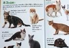 ネコ好きのハートをわしづかみ マクドナルド「おまけ」の動物図鑑が欲しい~