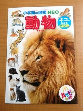 ミニ動物図鑑「ネコのなかま」