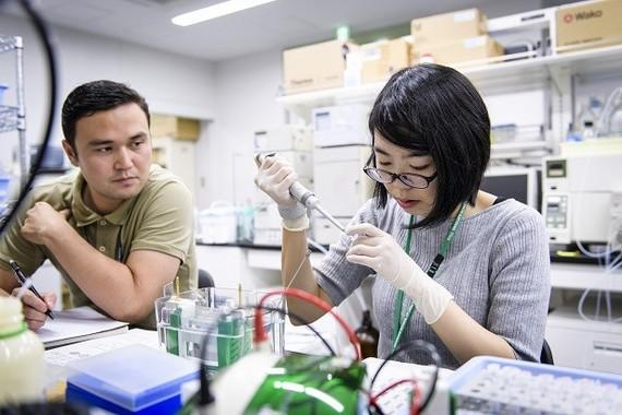 日韓のプロジェクトが注目しているのは、朝鮮人参に含まれるフィトケミカル(植物由来の化学物質)だ。どの程度、代謝の正常化に役立つかを調べると同時に、依存のメカニズムを解明しながら治療のための薬の創出につなげていく