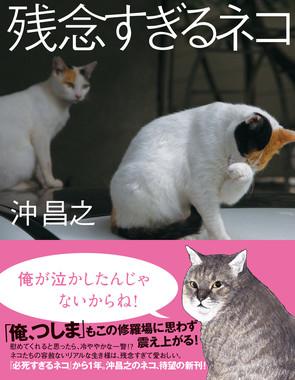 「必死すぎるネコ」