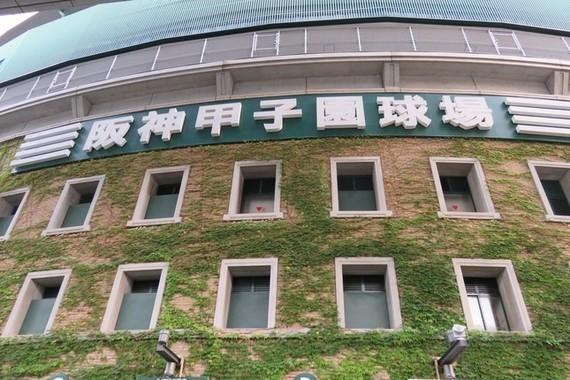 阪神、今季は受難の年に