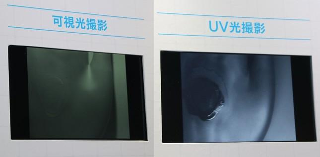 可視光撮影とUV光撮影の見え方の違い