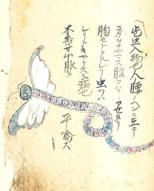 奇書に描かれたハラノムシ