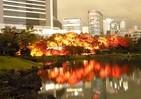 旧芝離宮恩賜庭園が大炎上?まさか... 思わず二度見「ライトアップ写真」の真相