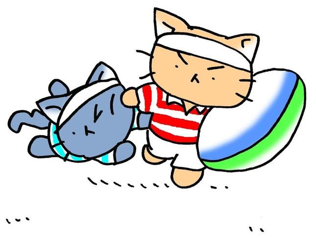 白猫チームと黒猫チームが、楕円球をめぐって大暴れ!