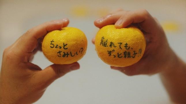 「湯気ひとすじ」ミュージックビデオ(5)
