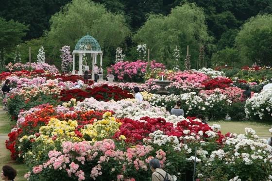 早春から初夏に咲く花々の見ごろに合わせたスタンプラリー実施