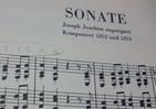慎重派ブラームスの「作品番号1番」 試行錯誤を重ねたピアノソナタ