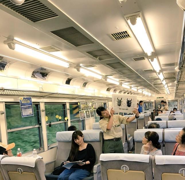 過去の「ホタル列車」の様子