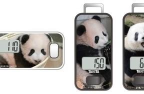 上野動物園のパンダ「シャンシャン」をあしらった歩数計3モデル