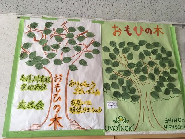 ワークショップなどで書いたメッセージを木のように貼りつけた