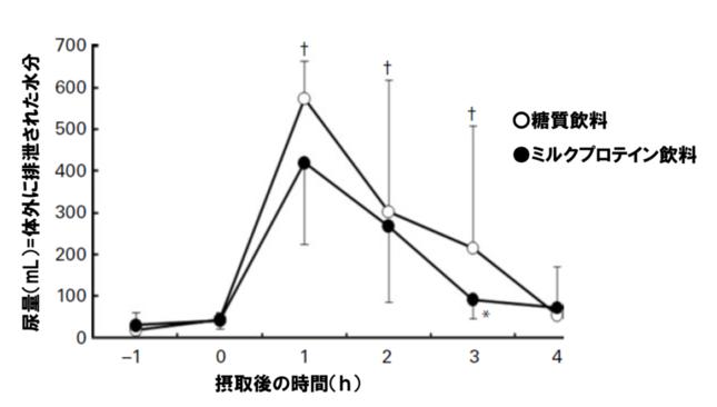「糖質飲料」と「乳たんぱく質を含む飲料」摂取後の尿量比較