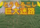 山形・鶴岡に出現した巨大迷路 大きさはサッカーフィールド並み