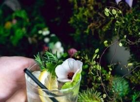 ハーブや花を摘みとって「モクテル」に 日本茶専門店のアートイベント