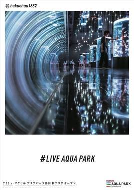 キャプション:フォトジェニック広告「LIVE AQUA PARK」(6)