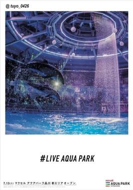 キャプション:フォトジェニック広告「LIVE AQUA PARK」(9)