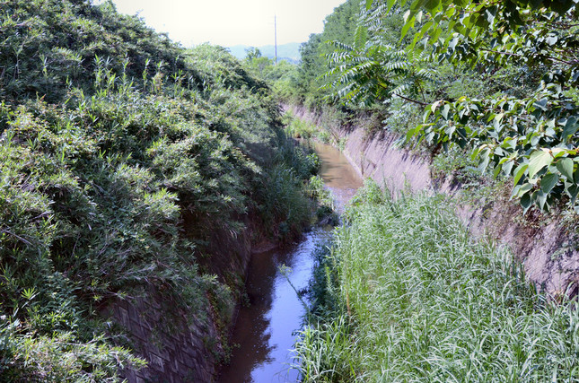 末政川の流れは小さなものだった