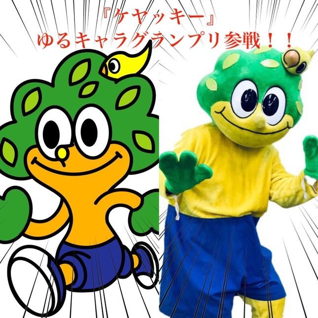 ゆるキャラグランプリで躍進する「ケヤッキー」(おいでよ宮城さんツイッターアカウントより)