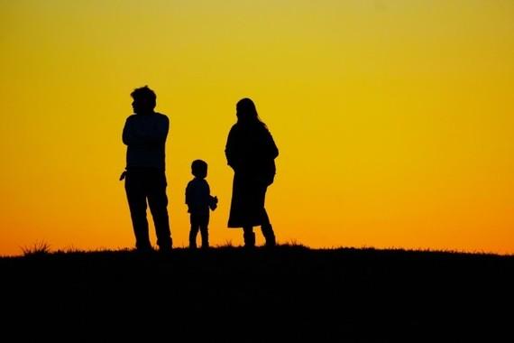現実には、家族のシステムに救われている個人もあるはず
