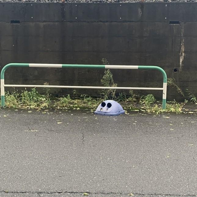 道路に落ちたゴミ箱の蓋(中根咲良さん提供)