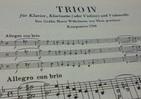 流行のオペラを取り入れ変奏曲に ベートーヴェンのピアノ三重奏曲「街の歌」