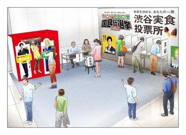 渋谷で「きのこ・たけのこ」の投票会を実施